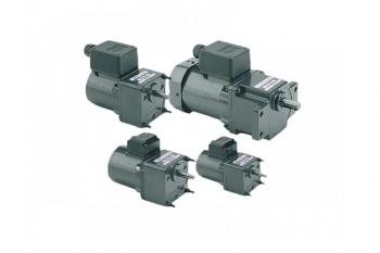 Motoreductoare electric 220V pentru Rotisor Protap
